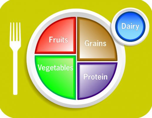 diagram of the plate for food guidance